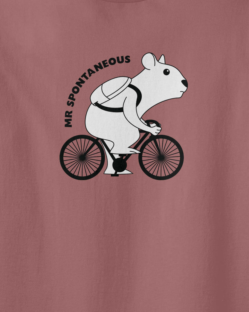 "The graphic of a hamster ridding his bike and written text of ""Mr Spontaneous"""