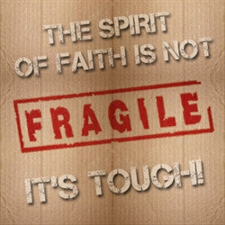 The Spirit of Faith is Not Fragile CDSet