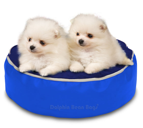 Dolphin Pets Bean Bag N.Blue/R.Blue-Filled (With Beans)