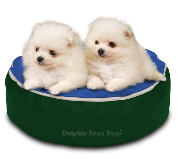 Dolphin Pets Bean Bag B.Green/ROYAL-Filled (With Beans)