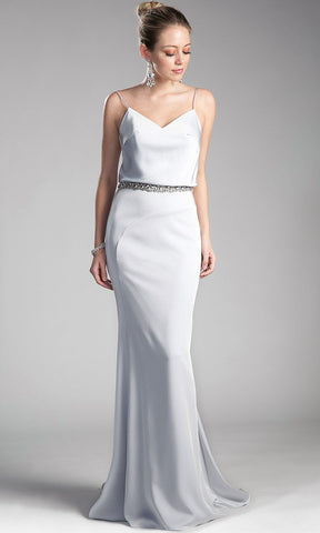 Long Silver Sheath Dress With Low Back