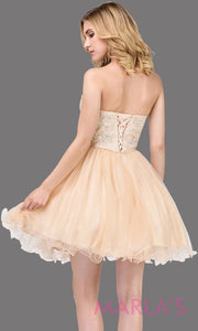 3014.4-B Short strapless puffy grade 8 grad champagne dress with lace top & satin ribbon. This light gold graduation dress is perfect for bat mitzvah, homecoming, quinceanera damas. Plus Sizes Available.