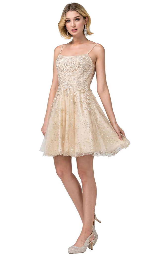 Dancing Queen - 3158 Embroidered Scoop Neck A-Line Dress In Neutral