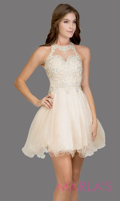 Short high neck tulle champagne grade 8 grad dress w sheer illusion back & lace. This simple light gold graduation dress is great as quinceanera damas, sweet 16 birthday, bat mitzvah, confirmation,junior bridesmaid,8th grade.Plus sizes avail