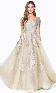 Cinderella Divine - C20 Off Shoulder Floral Lace Gown In Neutral