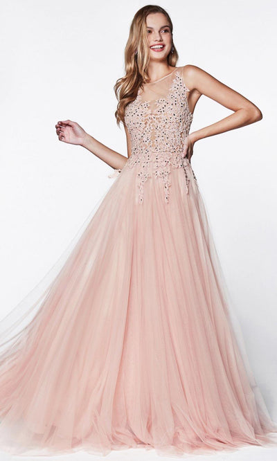 Cinderella Divine - CJ501 Jeweled Lace Tulle A-Line Dress In Pink