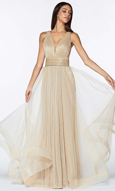 Cinderella Divine - CT0040 Metallic Tulle Dress In Champagne