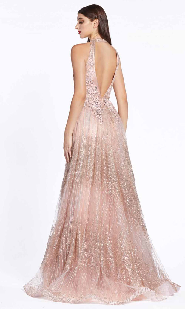 Cinderella Divine - CW767 Fitted Glitter Gown In Pink