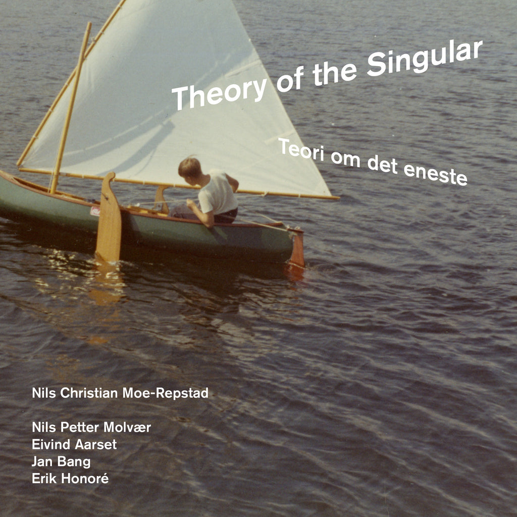 Theory of the singular