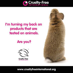 Stop Animal Testing Cosumetics & Its Alternatives 20