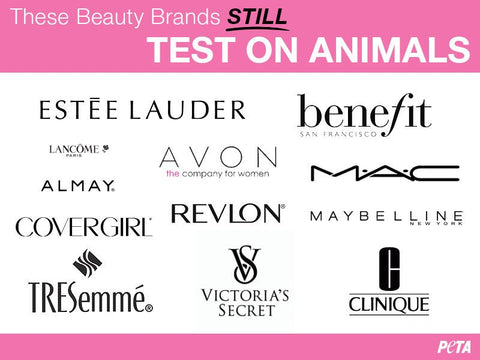 Stop Animal Testing Cosumetics & Its Alternatives 14