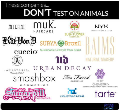 Stop Animal Testing Cosumetics & Its Alternatives 22