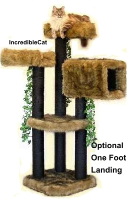5 Foot Colorado: 2 Luxury Cat Beds & Tunnel