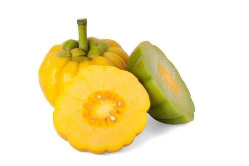 fruit tart recipe garcinia cambogia fruit