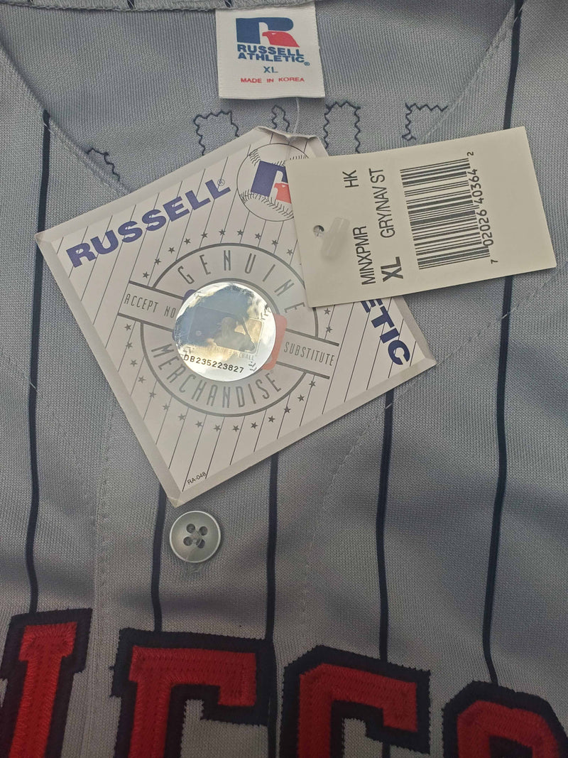 Shannon Stewart Autographed Authentic Minnesota Twins Jersey (PSA/DNA Hologram)