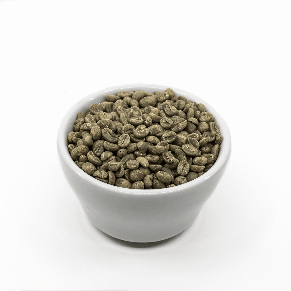 Lanna Coffee Co. Green Beans 5 lbs Green Coffee Beans | Thai Washed Process