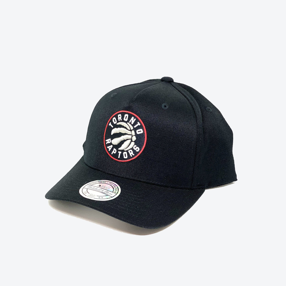 Toronto Raptors Team Colour Logo Flex 110 Snapback