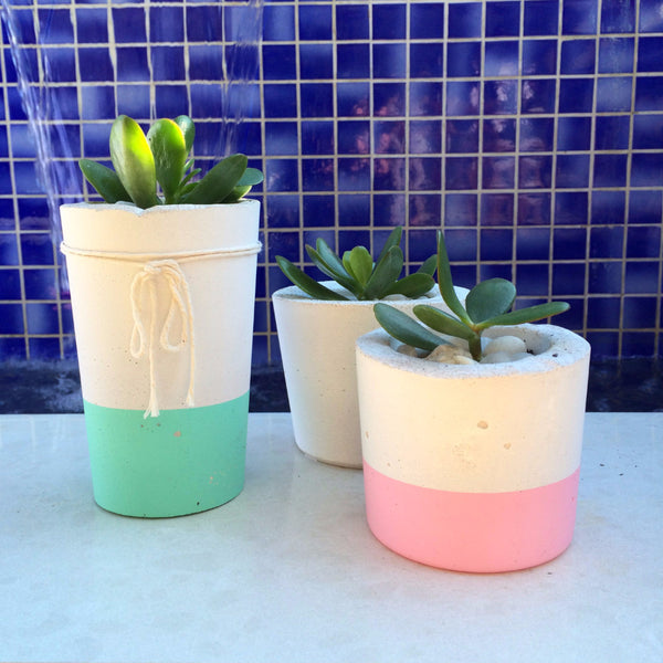 Concrete Planter Pop of Colour - Harrison & Co - Lifestyle & Design