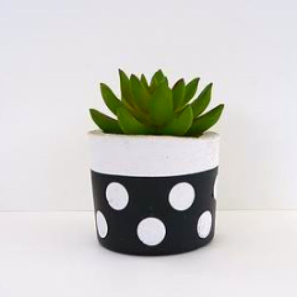 Lotsa Dots Succulent Planter Short - Harrison & Co - Lifestyle & Design