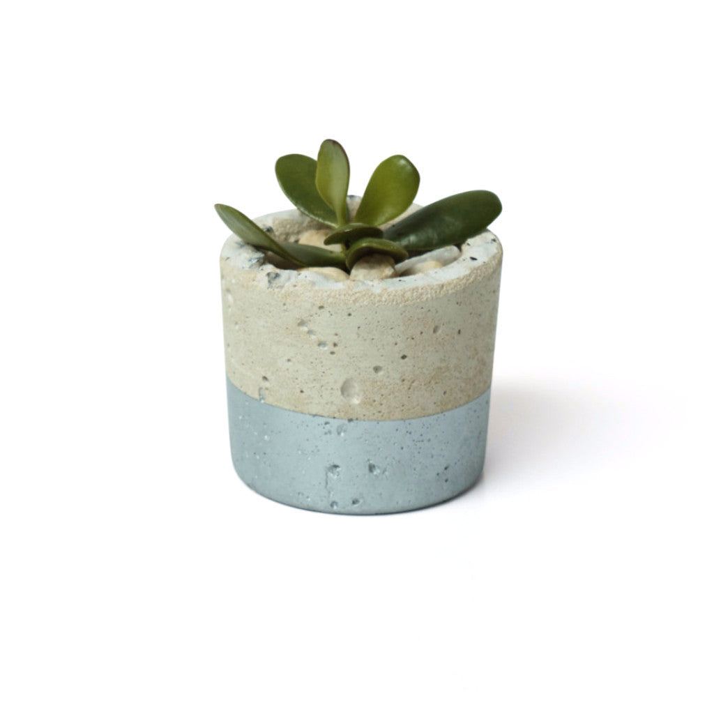 Silver Concrete Planter - Small - Harrison & Co - Lifestyle & Design