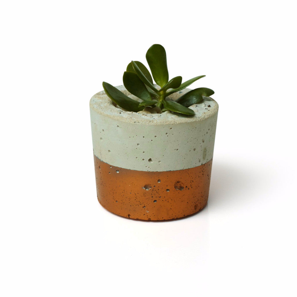 Concrete Medium Planter - Short Copper - Harrison & Co - Lifestyle & Design