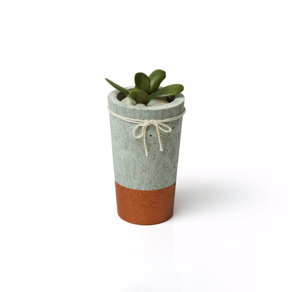Concrete Organic Planter - Harrison & Co - Lifestyle & Design