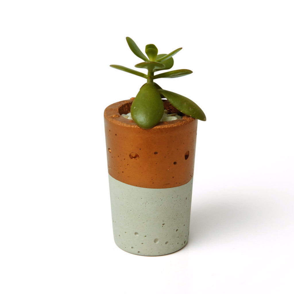 Tall Copper Concrete Planter - Harrison & Co - Lifestyle & Design