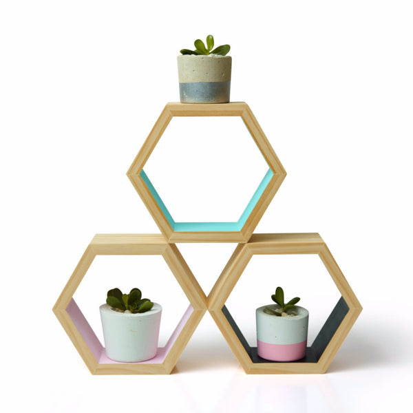 Hexagon Shadow Box - Harrison & Co - Lifestyle & Design