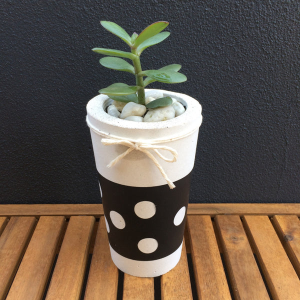 Lotsa Dots Succulent Planter Tall - Harrison & Co - Lifestyle & Design
