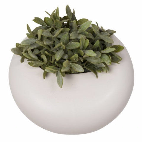 Round Wall Planter by GE