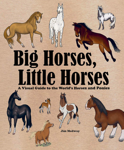 Big Horses, Little Horses : A Visual Guide to the World's Horses and Ponies
