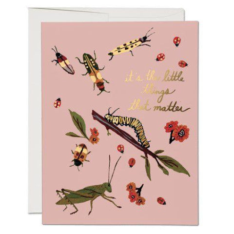 """Little Bugs"" Card"