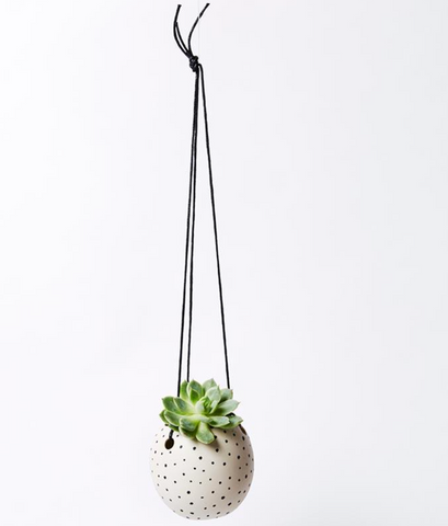 Spots Hanging Mini Planter