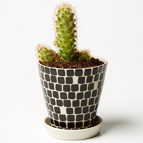 Pocket Planter Black Tile - Large