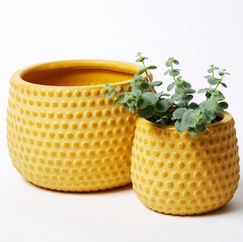 Hobnail Planter - Medium (Multiple Colors)