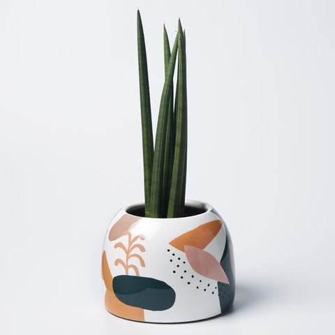 Picasso Garden Pot (Multiple Colors)