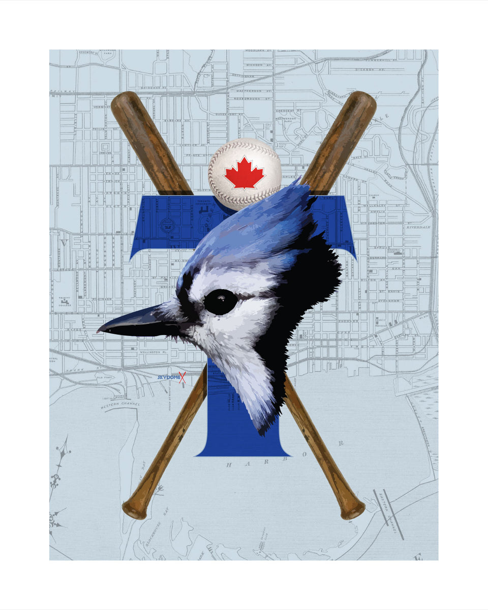 Toronto Blue Jays-Inspired Baseball