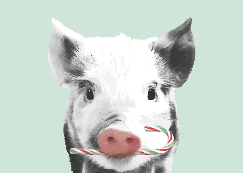 Greeting Card: Peppermint Piglet