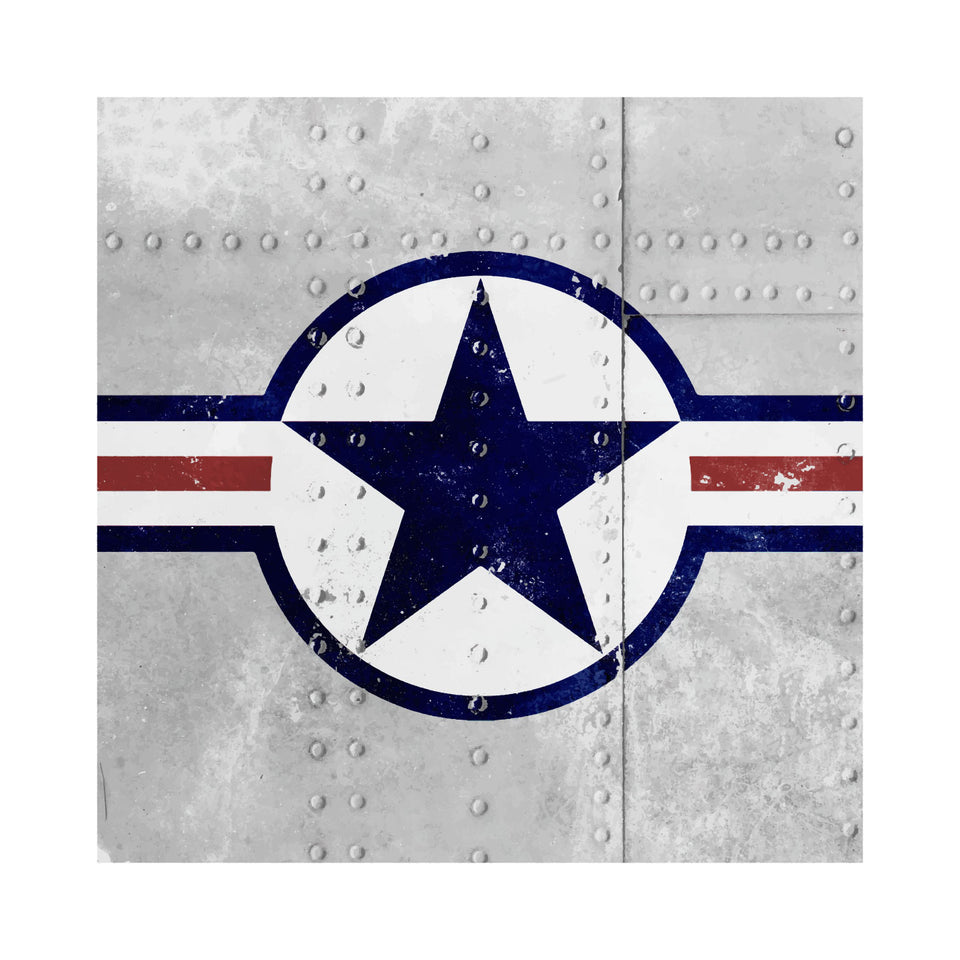USAAF Riveted Roundel