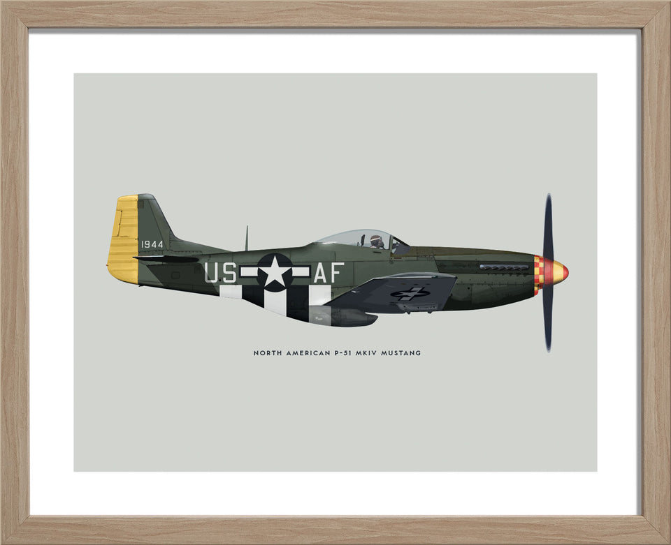 P-51 Mustang Fighter (USAAF)