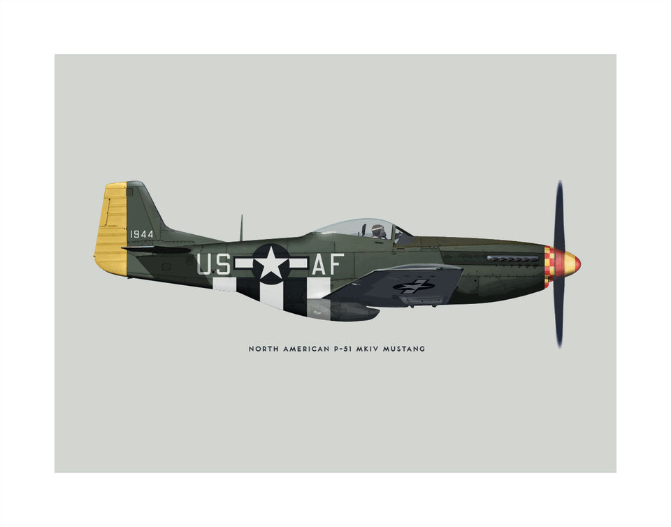 North American P-51 Mustang Fighter (USAAF)