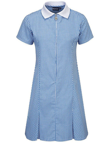 Avon Corded Gingham Dress Blue