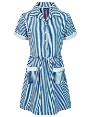 Kinsale Corded Stripe Dress Blue