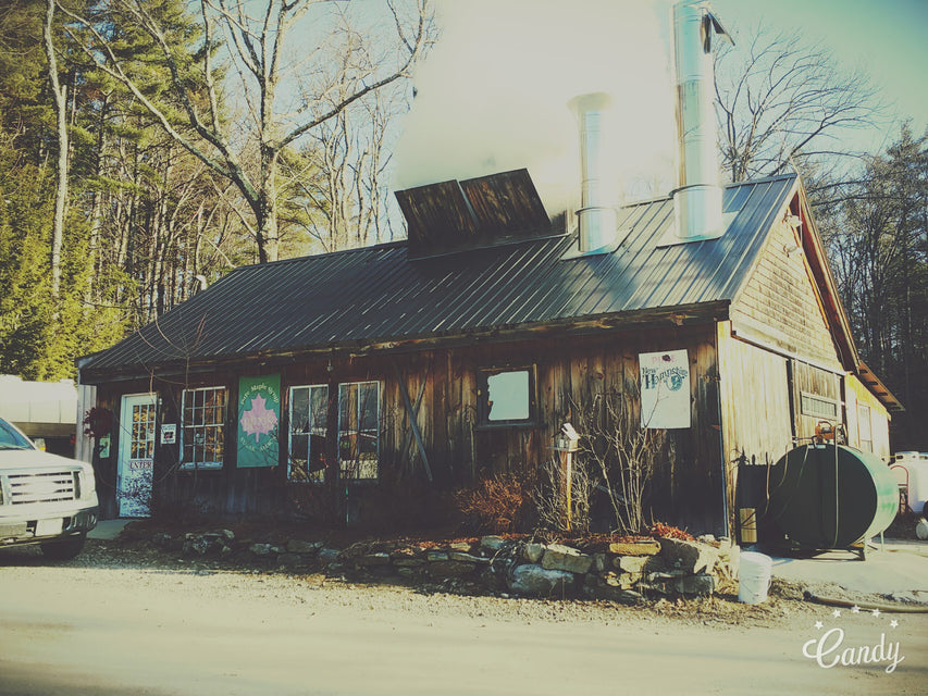 Special Feature on Ben's Sugar Shack by Price Chopper Supermarkets