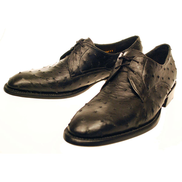 Black Full Quill Ostrich Oxford