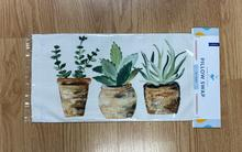 Succulent Pillow Swap