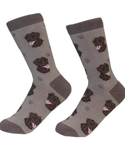 Sock Daddy Chocolate Labrador Socks