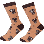Sock Daddy German Shorthaired Pointer Socks