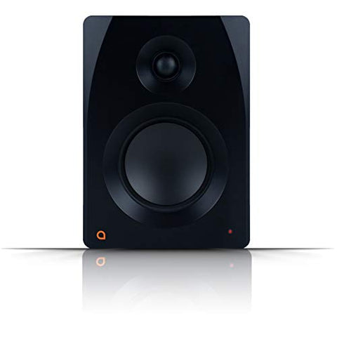 Artesia M-300 Monitor (Single)