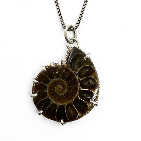 Ammonite Song Necklace